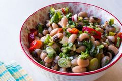 Njure Bean Salad med tomater, persilja och dill/Borulce Salatasi/Salata arkivbilder