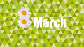 March 8 Women`s Day. NMarch 8 Women`s Day daisy Celebration card Stock Photo