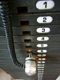 Números fijos de los pesos en body-builder Imagen de archivo
