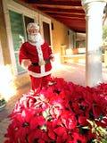 Noël chez Cuernavaca Photos libres de droits