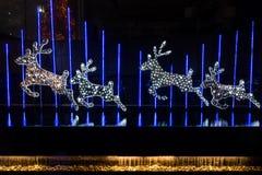 Noël décoré des cerfs communs Photographie stock