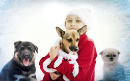 Noël d'enfant et de chiot Image stock