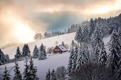 Noël dans Forest Winter noir dans la neige de Todtnauberg image libre de droits