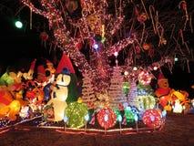 Noël dans la banlieue de la Virginie Images libres de droits