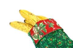 Noël de banannas Image libre de droits