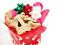 Noël de chienchien photo libre de droits
