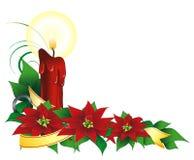 Noël des cdr plant1 Image libre de droits