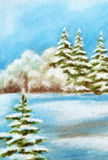 Noël Forest Landscape d'hiver Photo libre de droits