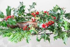 Noël Holly Bush avec des baies Image stock