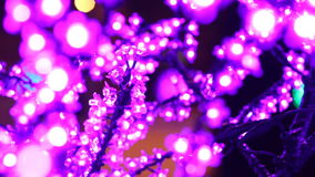 Noël, nouvelle année, les vacances, illumination sous forme de Sakura se développe clips vidéos