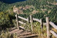 Nożna ścieżka w górze, Obraz Stock