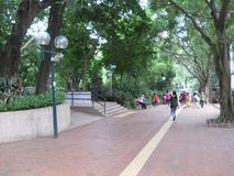 Nożna ścieżka w luksusowym Kowloon parku, Hong Kong obraz stock