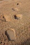 Nożna krok plaża - 01 Fotografia Stock