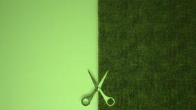 Nożyce ciie zielonej trawy na pastel zieleni barwili tło z kopii przestrzenią, ekologia szablonu mockup pojęcie obraz stock