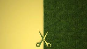 Nożyce ciie zielonej trawy na pastelowym żółtym barwionym tle z kopii przestrzenią, ekologia szablonu mockup pojęcie zdjęcia royalty free