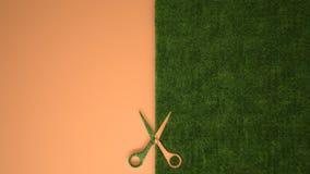 Nożyce ciie zielonej trawy na pastelowym pomarańczowym barwionym tle z kopii przestrzenią, ekologia szablonu mockup pojęcie obraz stock