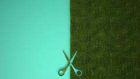 Nożyce ciie zielonej trawy na pastelowym turkusowym barwionym tle z kopii przestrzenią, ekologia szablonu mockup pojęcie obrazy royalty free