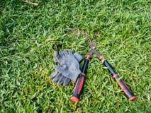 Nożyce i rękawiczka w jardzie Zdjęcia Stock