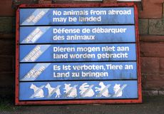 No animal from abroad Stock Image