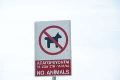 No animals. On the beach in greek and english Royalty Free Stock Photo