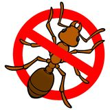 No Ant Stock Photos