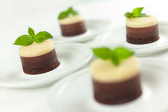 No Bake 3 Chocolates Cheesecakes. A no bake 3 Chocolates Cheesecakes with fresh mint buds and shallow depth of field on the dessert Royalty Free Stock Photo