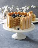 No bake chocolate charlotte cake with fresh blueberries. stock image