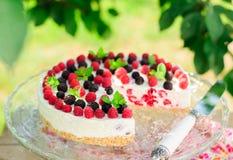 No-bake Raspberry Cheesecake Stock Image