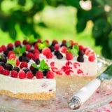 No-bake Raspberry Cheesecake Stock Images