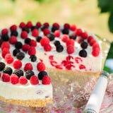 No-bake Raspberry Cheesecake Stock Photography