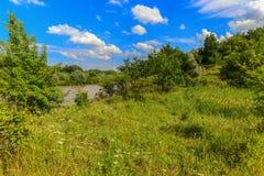 No banco de rio selvagem Imagem de Stock