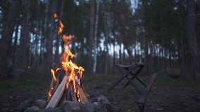No beautil nivelar a floresta é um fogo Estão próximo a cadeira e o machado Fogueira bonita que queima-se na floresta vídeos de arquivo