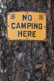 No CAmping Here Sign Stock Image