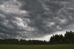 No campo antes da tempestade Imagens de Stock Royalty Free