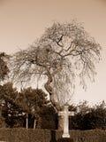 No cemitério Imagens de Stock Royalty Free