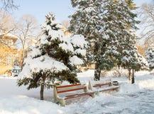 No Central Park coberto de neve no búlgaro Pomorie, inverno 2017 foto de stock