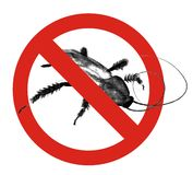 No cockroaches Stock Photo