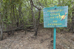 No crabbing sign. Wooden No Crabbing sign written in Spanish stands on edge of thick vegetation of marsh on the Caribbean island of Isla Culebra Royalty Free Stock Photo