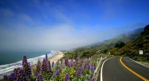 No. 1 da estrada de Califórnia Fotos de Stock Royalty Free