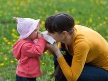 no. di allergia Fotografie Stock Libere da Diritti