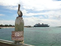 No diving Alert at Castaway Cay Royalty Free Stock Image