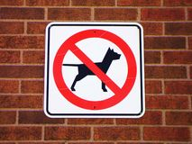 No dog  Royalty Free Stock Photo