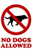NO DOG ALLOWED sign. On white background Stock Images