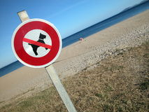 No dog sign on the beach Stock Photo