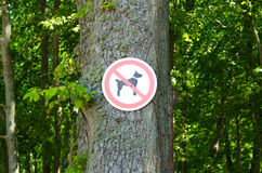 No dog sign on a trees background. Stock Images