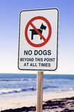 No Dogs Stock Photo