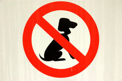 No Dogs. Dogs not allowed sign covered with dew Stock Photos