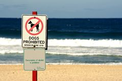 No dogs. And no alcohol signs on beach Royalty Free Stock Images
