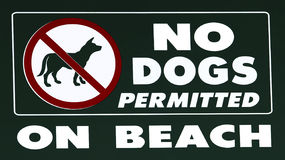 No Dogs Allowed Stock Images