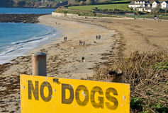 No Dogs Allowed Stock Image
